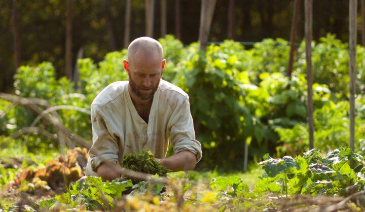 Biocyklisk vegansk odling – une nouvelle association biocyclique végétalienne créée en Suède